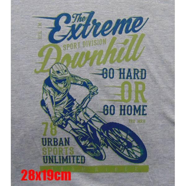 Φούτερ με κουκούλα Takepositon Extreme Downhill, Γκρι, 314-5512